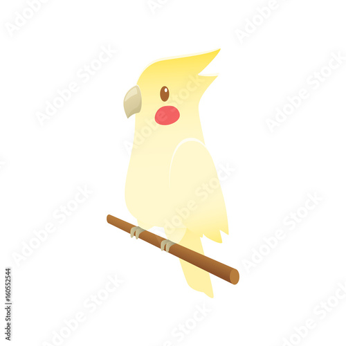 Cartoon cockatiel parrot bird vector Tapéta, Fotótapéta