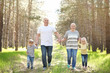 Happy grandparents with little children in forest on sunny day