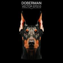 Doberman Dog Animal Low Poly D...