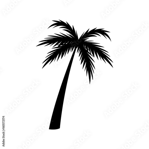 silhouette palm tree tropical natural vector illustration Wall mural