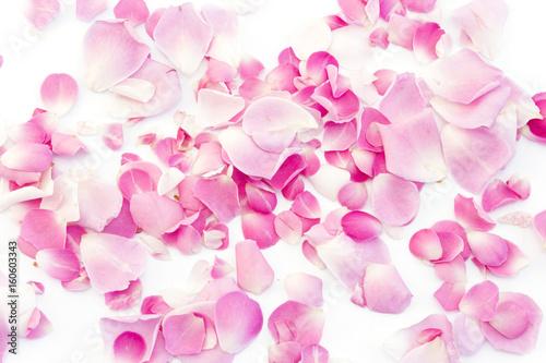 Deurstickers Kersenbloesem Pink Rose Petals