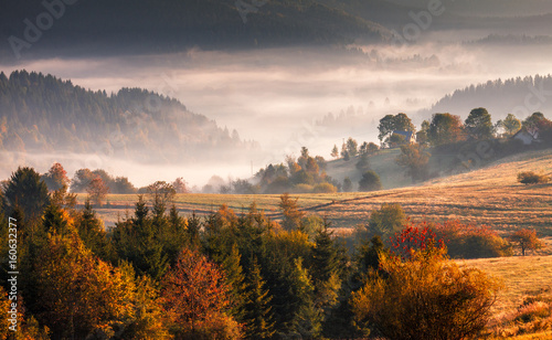 Staande foto Herfst Autumn landscape, misty morning in the region of Kysuce, Slovakia, Europe.