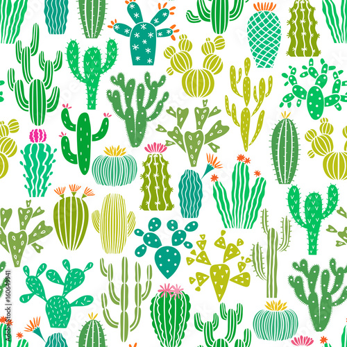 Photo  Vector cactus plant seamless pattern