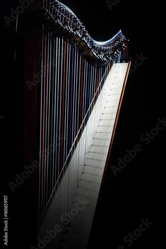 Fototapeta Harp instrument strings closeup. Irish harp music