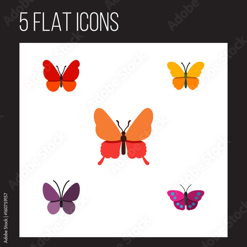 Fotografie, Obraz  Flat Icon Monarch Set Of Violet Wing, Danaus Plexippus, Butterfly And Other Vector Objects