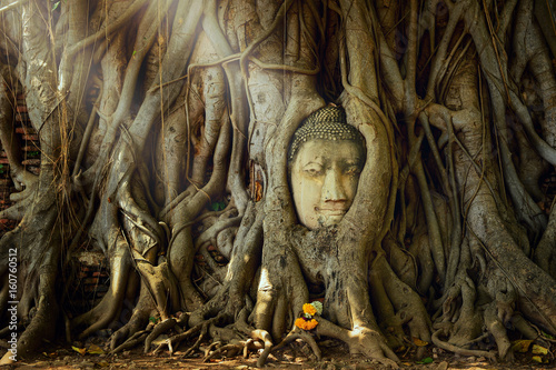 Recess Fitting Buddha Amazing sand stone buddha head in tree root in Mahathat temple, Ayutthaya, Thailand, UNESCO,Thailand temple