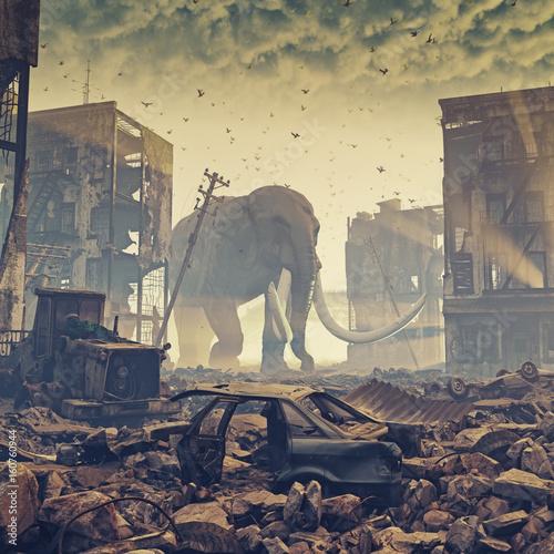 Fototapeta giant elephant in destroyed city obraz na płótnie