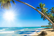 Holidays, tourism, happiness, joy, relaxing, time out, meditation: dream vacation at a secluded beach in the Caribbean :)