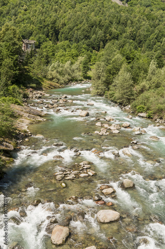 Foto op Aluminium Bos rivier River flowing through the mountain forests in the Italian Alps