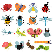 Vector Illustration Of Insects...