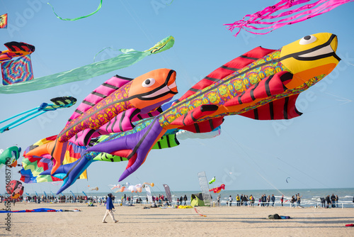 Giant carp kites on the beach Canvas Print