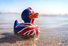 British Flag Rubber Duck In Th...