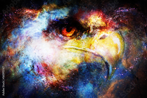 Eagle head in cosmic space. Animal concept. Profile portrait. Canvas Print