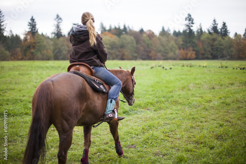 Young woman riding horse in meadow