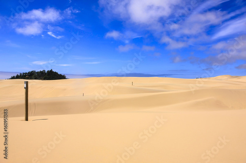Sand Dunes in the Jessie M Canvas Print