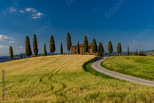 In de dag Toscane Extraordinary panorama of the Siena countryside, in the valley of the valley