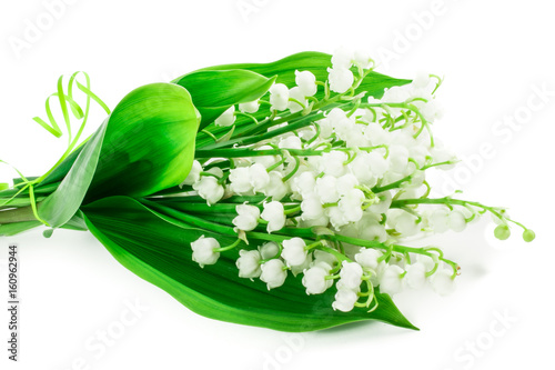 Wall Murals lily of the valley flowers