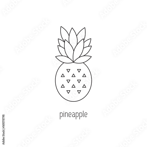 Garden Poster Retro sign Pineapple line icon