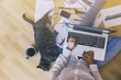 Relaxing work from home: girl on a floor working assisted by her cat