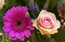 Rose Et Marguerite En Bouquet