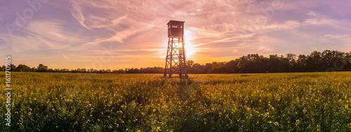 Fotomural Jagd Jäger Hochsitz im Morgenlicht, Panorama, Rapsfeld Landleben Weidwerk Forstw