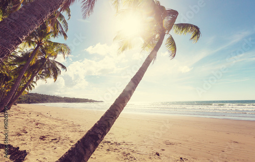 Foto-Kissen - Tropical beach (von Galyna Andrushko)