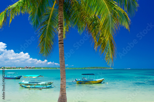 Spoed Fotobehang Eiland beautiful beach and tropical sea