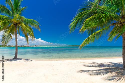 Ingelijste posters Caraïben tropical beach