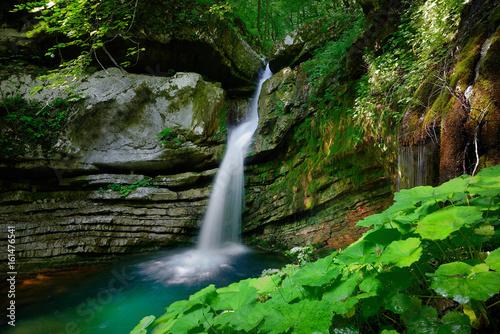 Foto op Canvas Watervallen Hidden waterfall in the deep forest