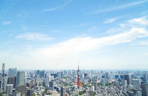 Spoed Foto op Canvas Tokio 東京都市風景 東京タワー 六本木から望む東京湾方面