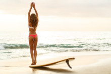 Beautiful Sporty Surfing Girl In Sexy Bikini Stretching Before Yoga On Yellow Surf Longboard Surfboard Board On Sunrise Or Sunset On A Sand Beach. Modern Active Sport Lifestyle And Summer Vacation.