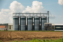 Elevator To Store Grain In A F...