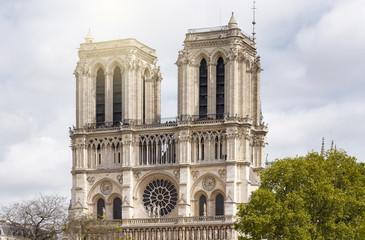 Fototapeta na wymiar Notre-Dame de Paris in the evening in Paris