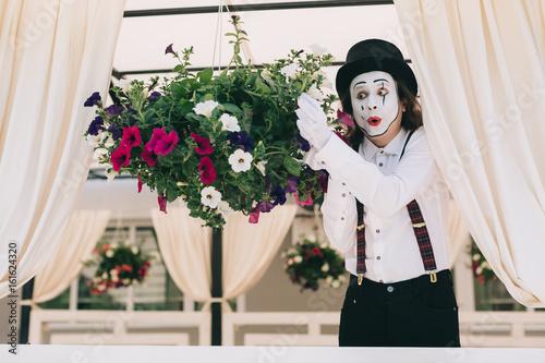 Fototapeta Pantomime theater artist posing near the pot of summer flowers. obraz na płótnie