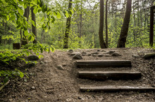 Old Wooden Steps Lead The Path...