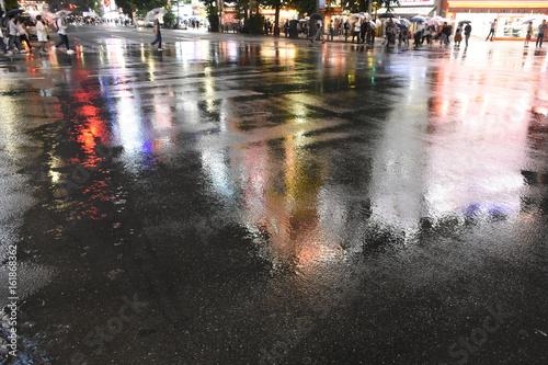 日本の東京都市景観・雨・夜景「東京・秋葉原の電気街」 Canvas Print