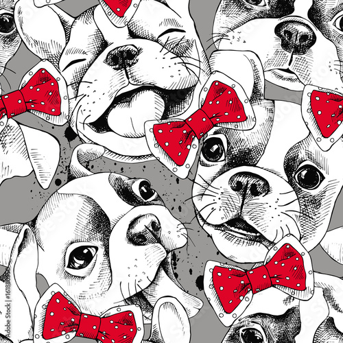 Fotografie, Obraz  Seamless pattern depicting portraits of French Bulldog and tie
