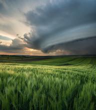 Cyclone On The Field. Beautifu...