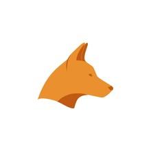 Dingo Vector Illustration