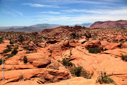 Foto op Canvas Baksteen Red rock desert landscape of Snow Canyon State Park Utah