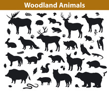 Woodland Forest Animals Silhou...