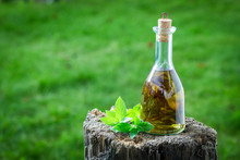 Natural And Homemade Liqueur Made Of Mint And Alcohol