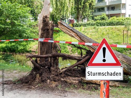 Foto op Plexiglas Onweer Achtung Sturmschaden Baum