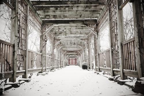 Fototapeta Deep winter obraz na płótnie