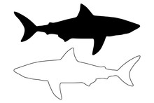 Shark Silhouette Vector, Silhouette Fish,