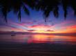 Tropical sunset beach with palm tree. Thailand, Samui island