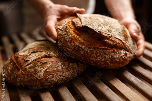 Photo Stands Bread Bio Brot Bäckerei