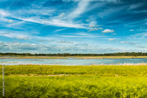 Wall Murals Blue Wetlands and Sky