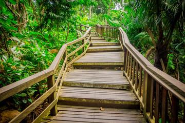FototapetaDragon bridge at Ubud Sacred Monkey Forest Sanctuary, a nature reserve and Hindu temple complex in Ubud, Bali, Indonesia