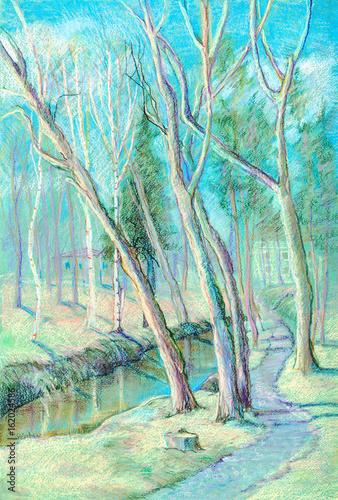 Spoed Foto op Canvas Turkoois Stream in park